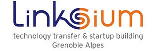 logo linksium.png